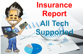 Computer Insurance Report
